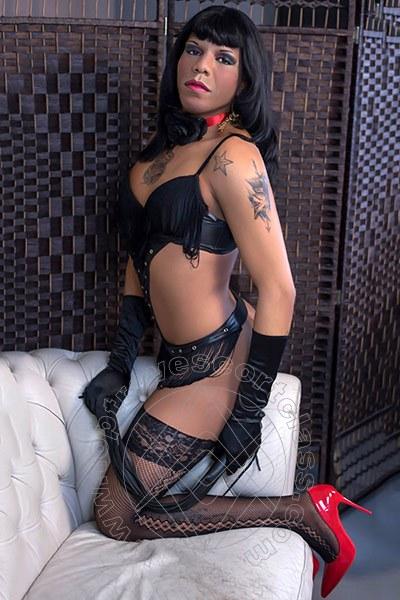 Rebecca Mulatta Brasiliana  CINISELLO BALSAMO 3272610945